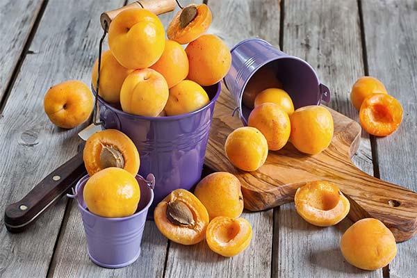 Что делали с абрикосами во сне