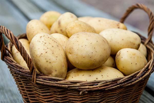 Что делали во сне с картошкой