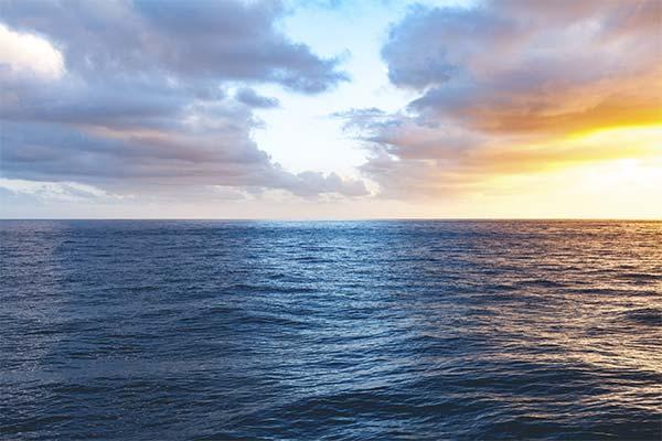 Какая приснилась вода в океане