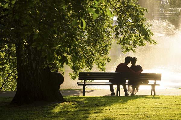 Сидеть на скамейке в саду во сне