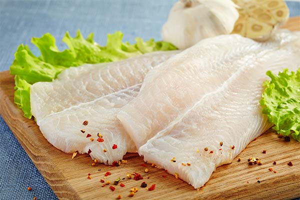 Сонник филе рыбы