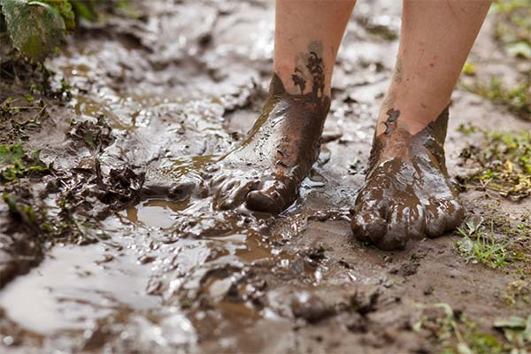 Сонник идти по грязи