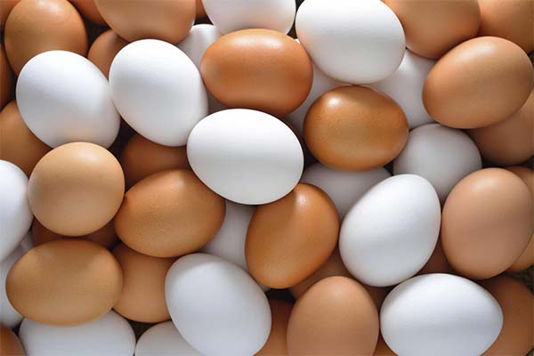 Сонник яйца