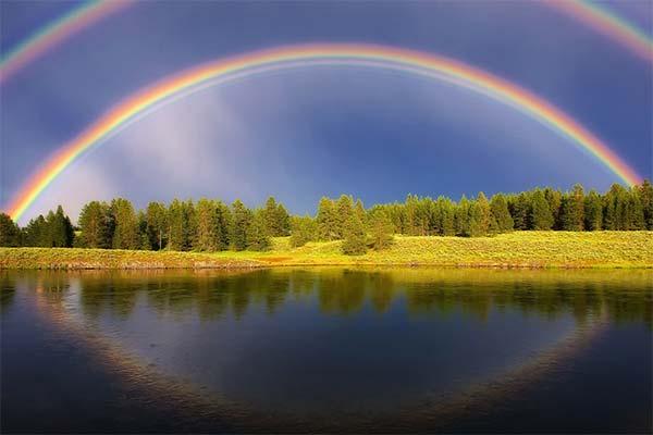 Сонник радуга