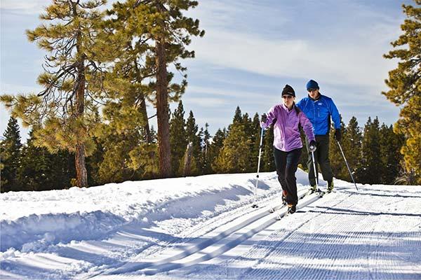 Кататься на лыжах в лесу