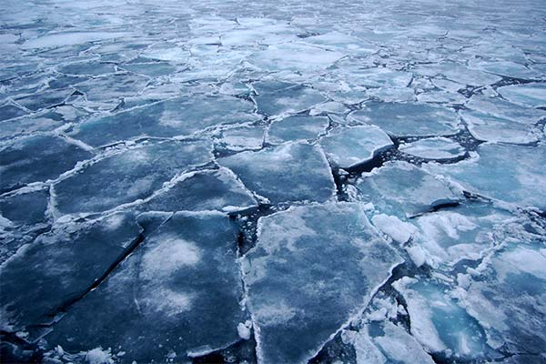 Лёд на море во сне