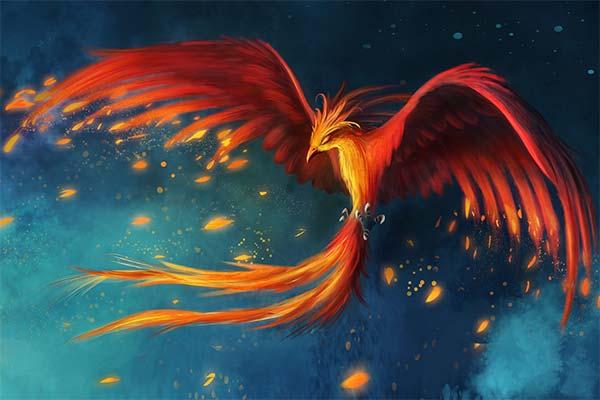 Сонник жар-птица