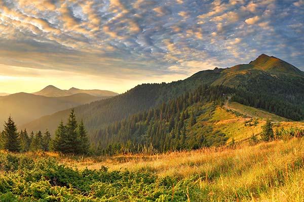 Сонник пейзаж