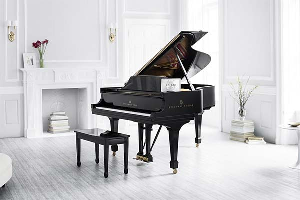 Сонник рояль