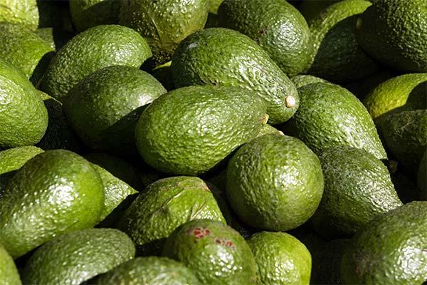 К чему снится авокадо