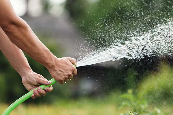 Облили водой из шланга