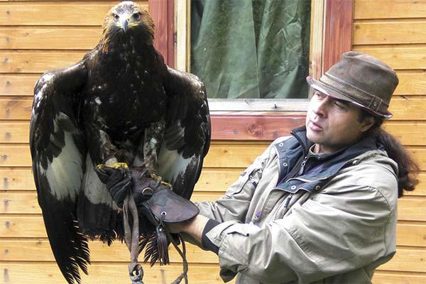 Орел в руках