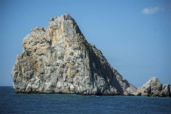 Сонник скалы