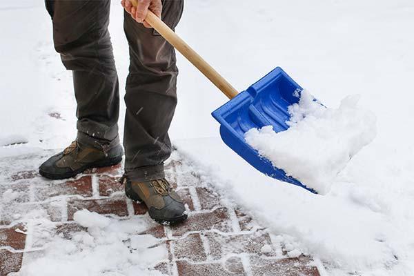 Сонник чистить снег