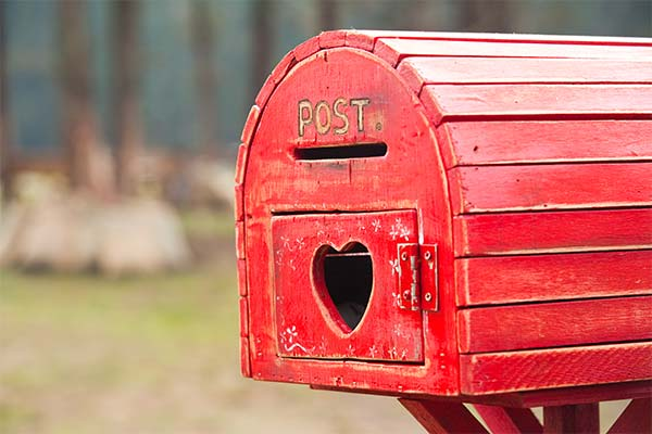 Сонник почтовый ящик