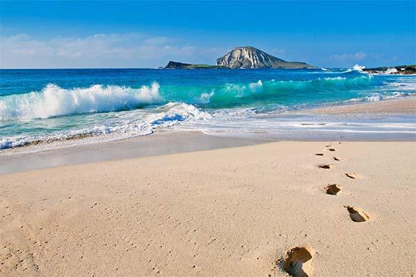 Белый берег моря