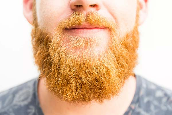Борода рыжего цвета