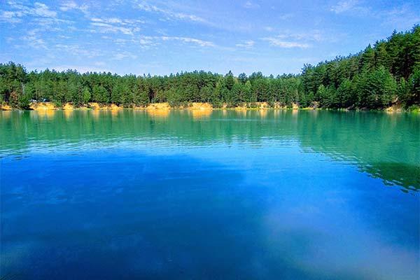 Чистая вода в водоёме