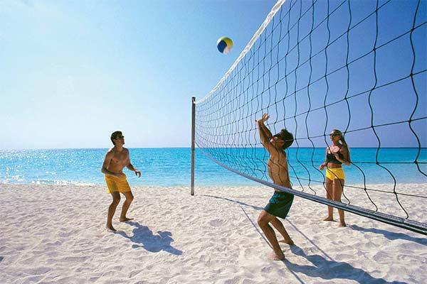 К чему снится волейбол