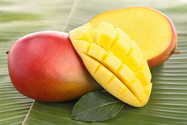 Сонник манго