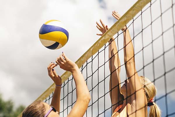 Сонник волейбол