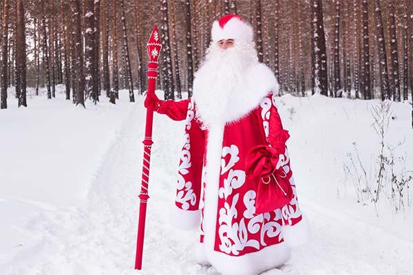 Сонник Дед Мороз
