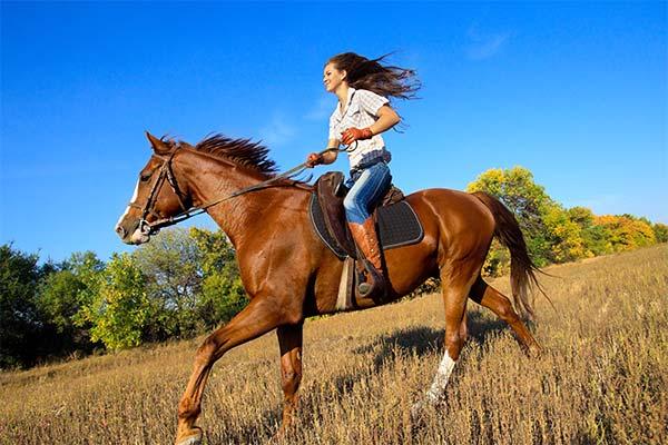 Сонник ехать на лошади