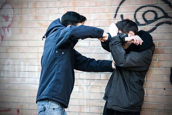 Сонник драться с братом