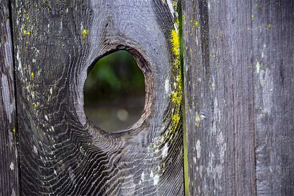 Сонник дыра в заборе