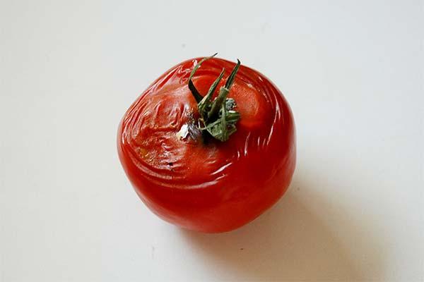 Сонник испорченные помидоры