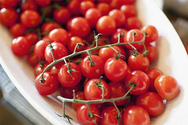 Сонник красные помидоры черри