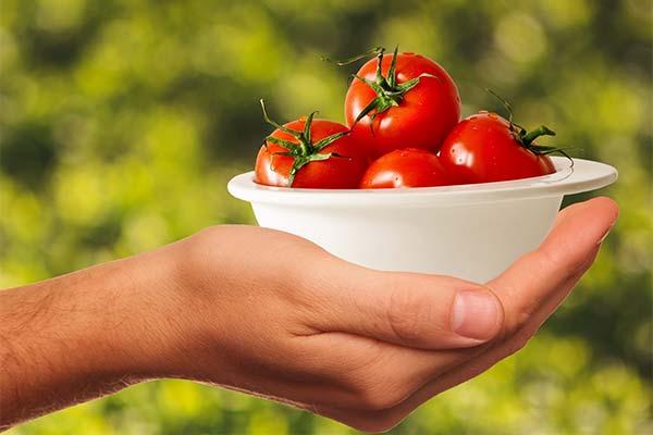 Сонник кушать красные помидоры