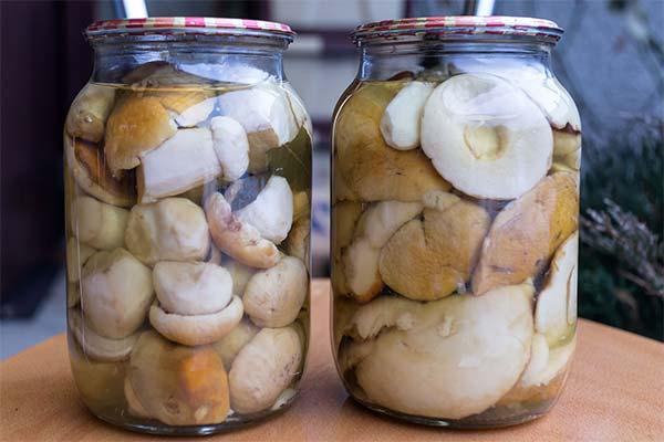 Сонник маринованные грибы в банке