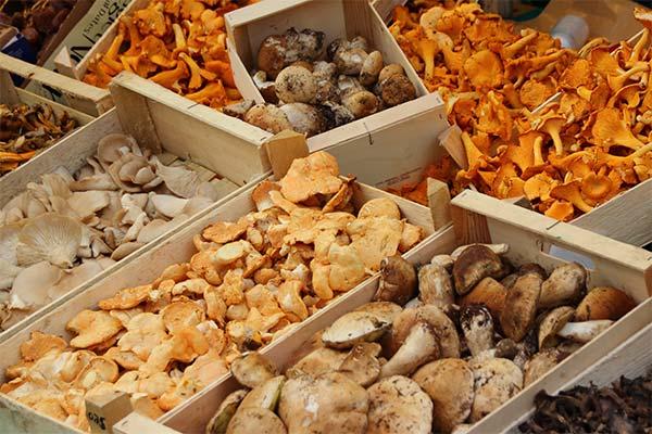 Сонник покупать грибы