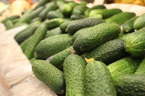 Сонник покупать свежие зеленые огурцы