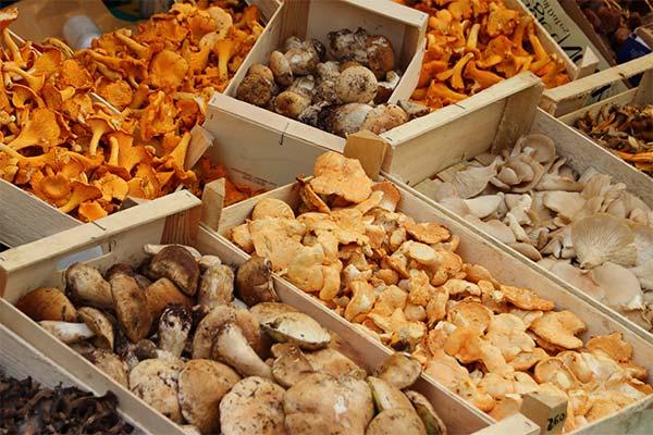 Сонник продавать грибы