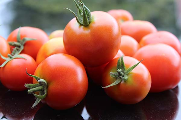 Сонник спелые красные помидоры