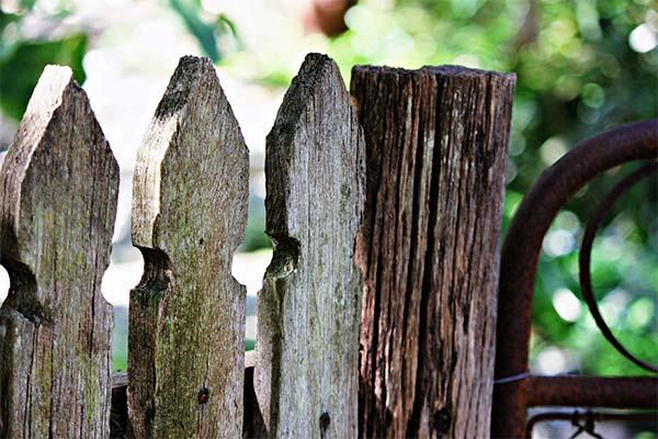 Сонник старый забор