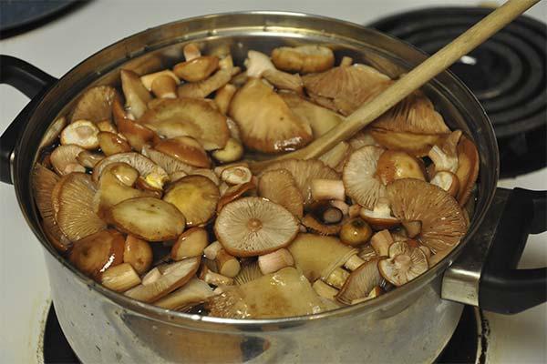 Сонник варить грибы