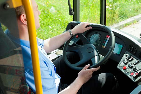 Сонник водить автобус