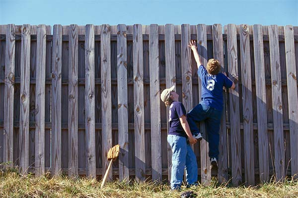 Сонник залезть на забор