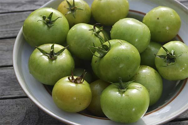 Сонник зеленые помидоры