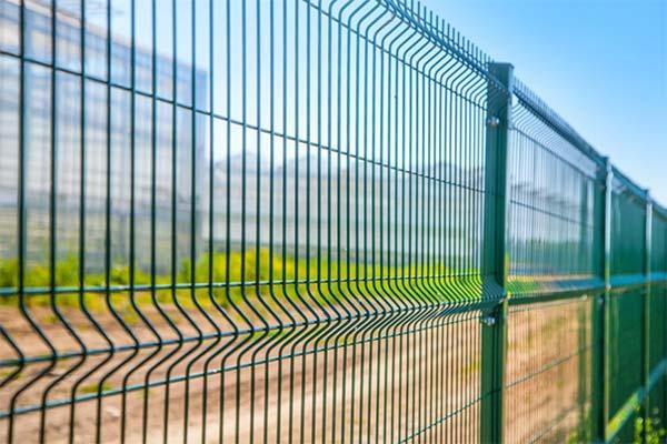 Сонник железный забор