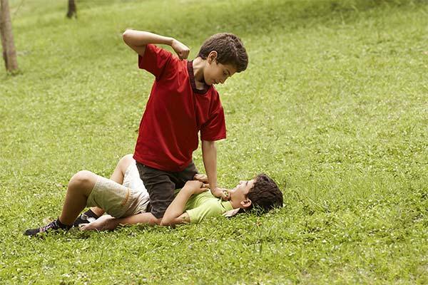 Сонник бить брата