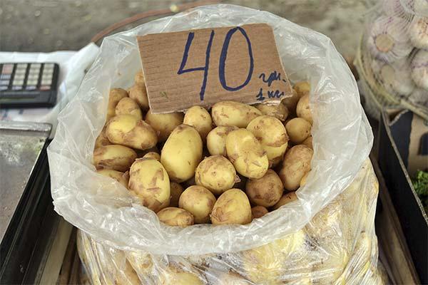 Сонник покупать картошку