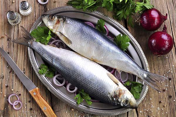 Сонник покупать соленую рыбу
