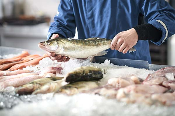 Сонник покупать свежую рыбу