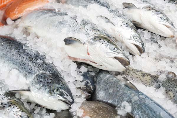 Сонник покупать замороженную рыбу