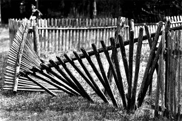 Сонник разобранный забор