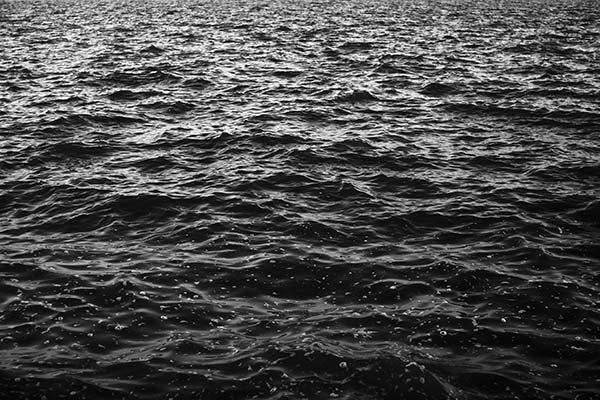 Черная вода